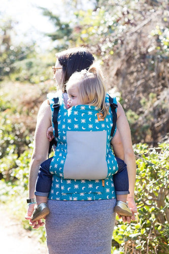 Coast Aurora - Tula Toddler Carrier