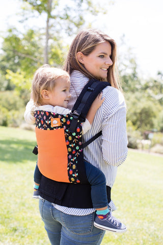 Coast Pesky - Tula Toddler Carrier