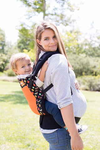Coast Pesky - Tula Baby Carrier