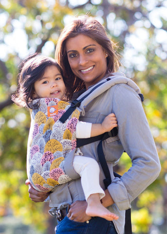 Toddler Shenandoah - Tula Toddler Carrier - Baby Tula - 1