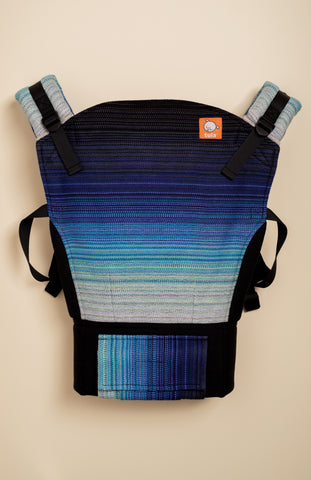 Stewed Rhubarb The Little Things (black weft) - Tula Signature Baby Carrier