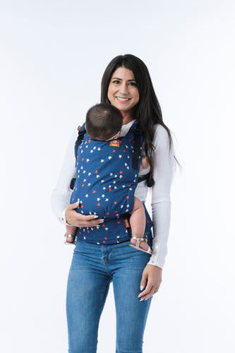 Homecoming - Tula Standard Carrier Ergonomic Baby Carrier | Baby Tula