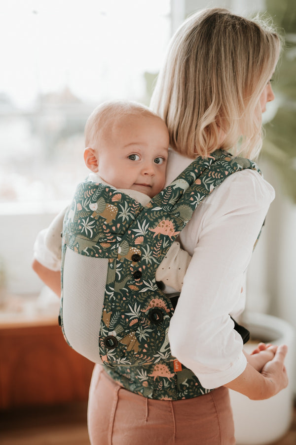 Coast Land Before Tula - Tula Explore Baby Carrier