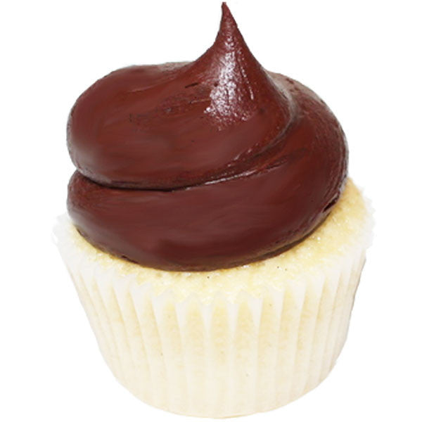 Vanilla with Chocolate Frosting