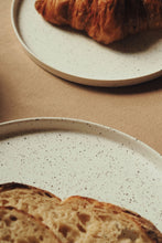 Load image into Gallery viewer, Speckled Plate Set — Modern