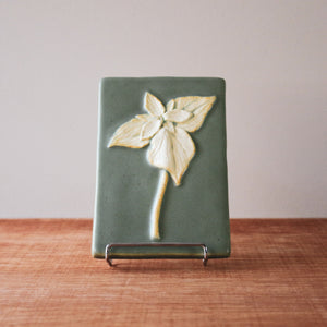 Ceramic Scott Weaver | 4x6 Trillium Tile