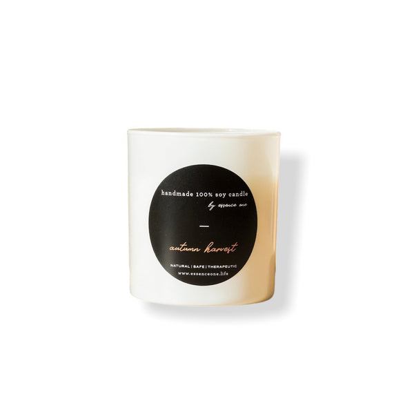 Holiday Fragrance Candle Collection