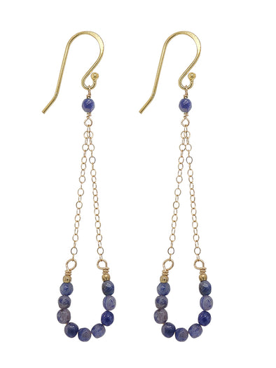 Lucky Horseshoe Hook Earrings - Sodalite