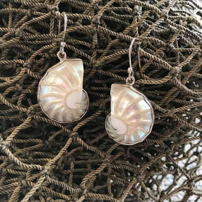 Spiral Seashell Earrings - BEACH TREASURES ONLINE