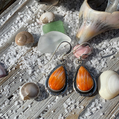 Spiny Oyster Shell Teardrop Earrings