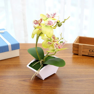 Multi-color Artificial Butterfly Orchid Flower Plants With Flower Pot