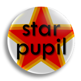 Star Pupil Award School Badge 25mm