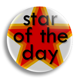 Star of the Day Award School Badge 25mm