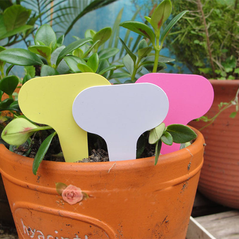 50pcs/set Reusable Garden Labels Plastic Plant Garden Decoration T-type Tag markers for plants plants nursery labels plant label