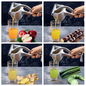 Stainless Steel Manual Fruit Juicer