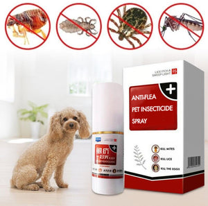PET INSECTICIDE SPRAY PORTABLE ANTI-FLEA