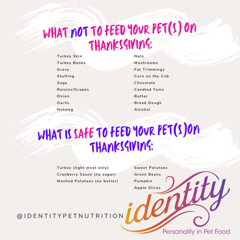 What your pets can or can't have at Thanksgiving!