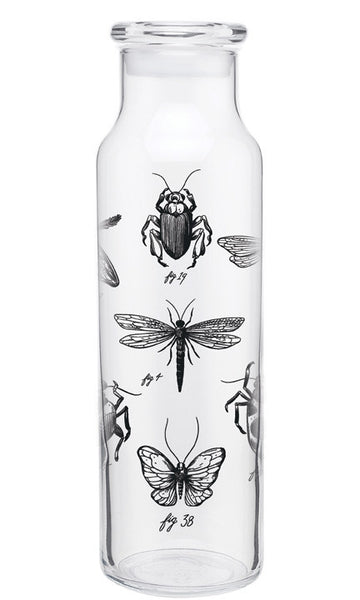 Insects 22oz