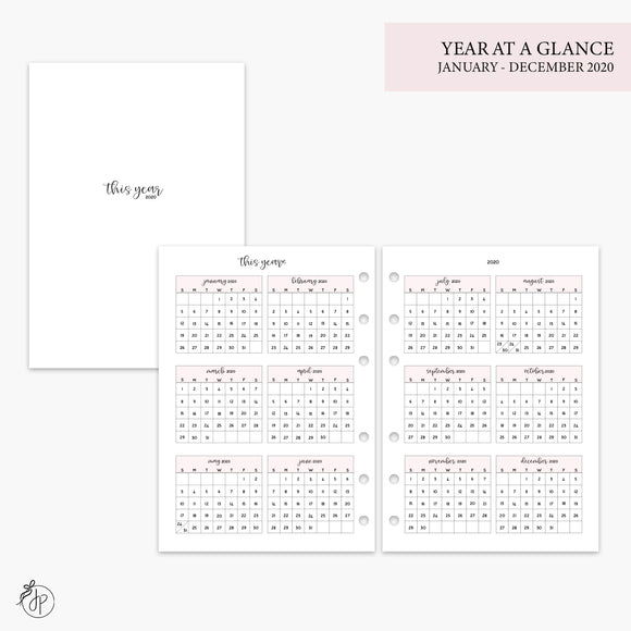 Year at a Glance 2020 Pink - A5 Rings