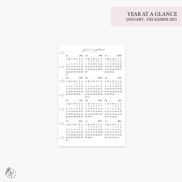 Year at a Glance 1 PG 2021 Pink - Mini HP Disc