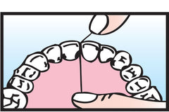 3.Move floss up and down against <br />tooth, around the gumline.