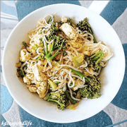 Shirataki Noodles-Angel Hair Style