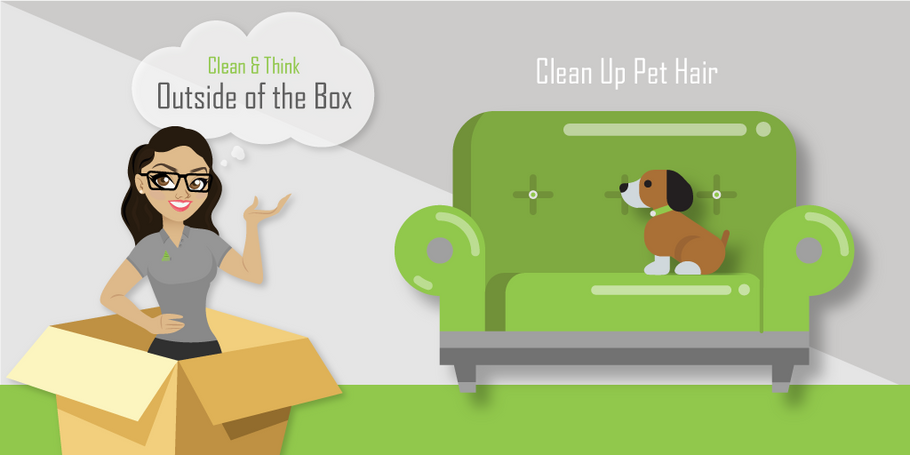 Clean Up Pet Hair, Try This!