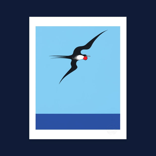 Pacific Frigate Bird print by Don Binney