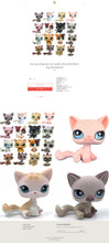 Load image into Gallery viewer, Kids Toys Dropshipping Store for Sale