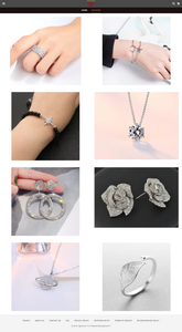 Jewelry Dropshipping Store for Sale