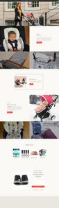 Baby Stroller and Accessories Dropshipping Store for Sale