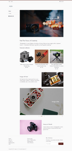Camera Accessories Dropshipping Store for Sale