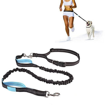 Hands Free Running Leash