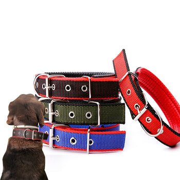 Durable & Adjustable Collars for Large Medium & Small Dogs