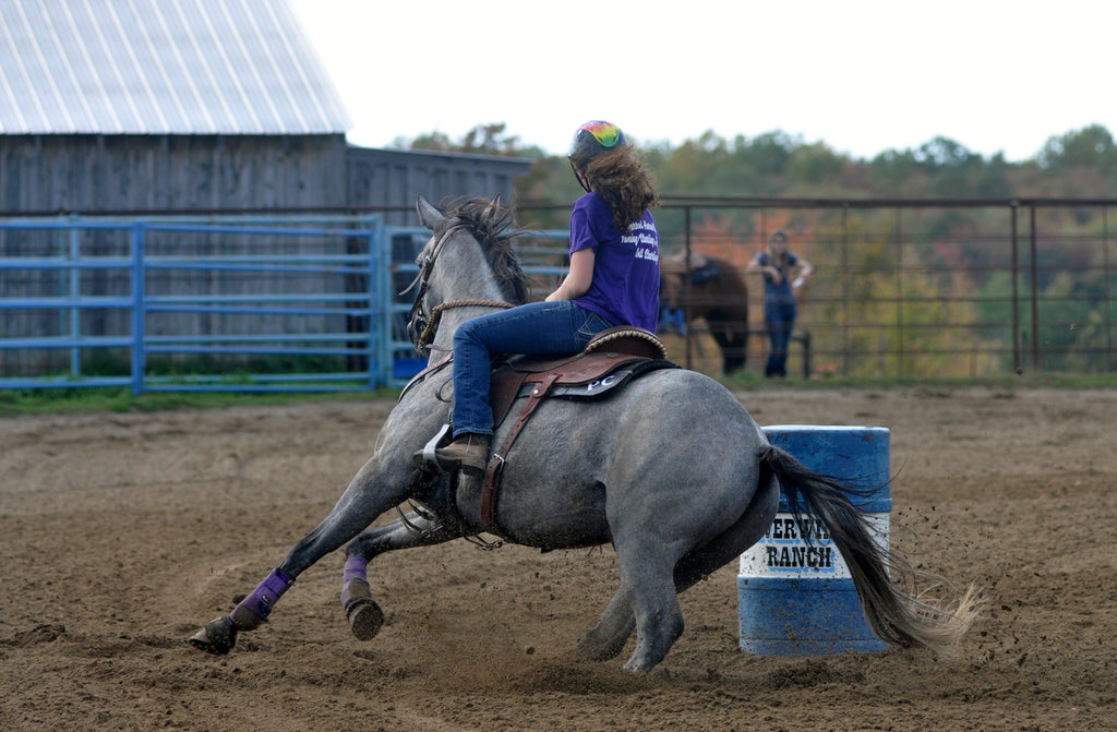 From the Archives: PC Barrel Horses