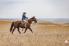 From the Archives: The South Dakota Cowgirl