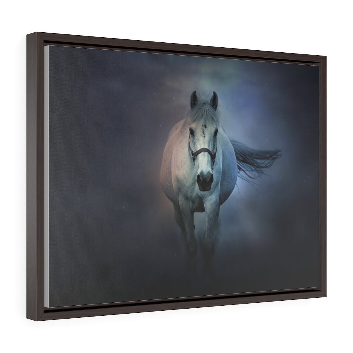 A Lone horse - Horizontal Framed Premium Gallery Wrap Canvas