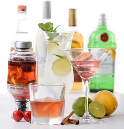 Tastemaker Craft Mixologist liquor/wine infuser
