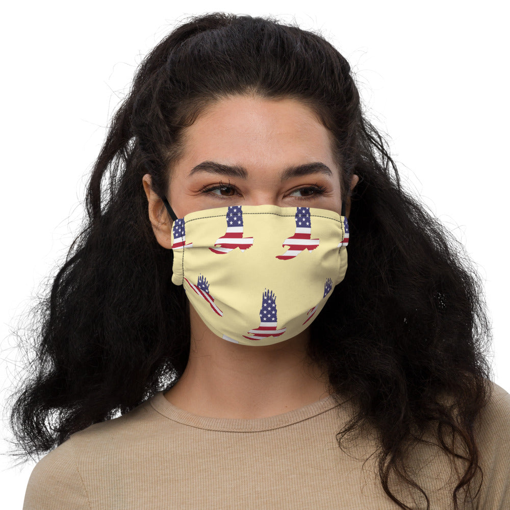American Flag Pattern Bald Eagle Premium face mask