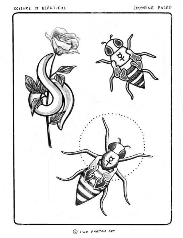 Flies and worm coloring page