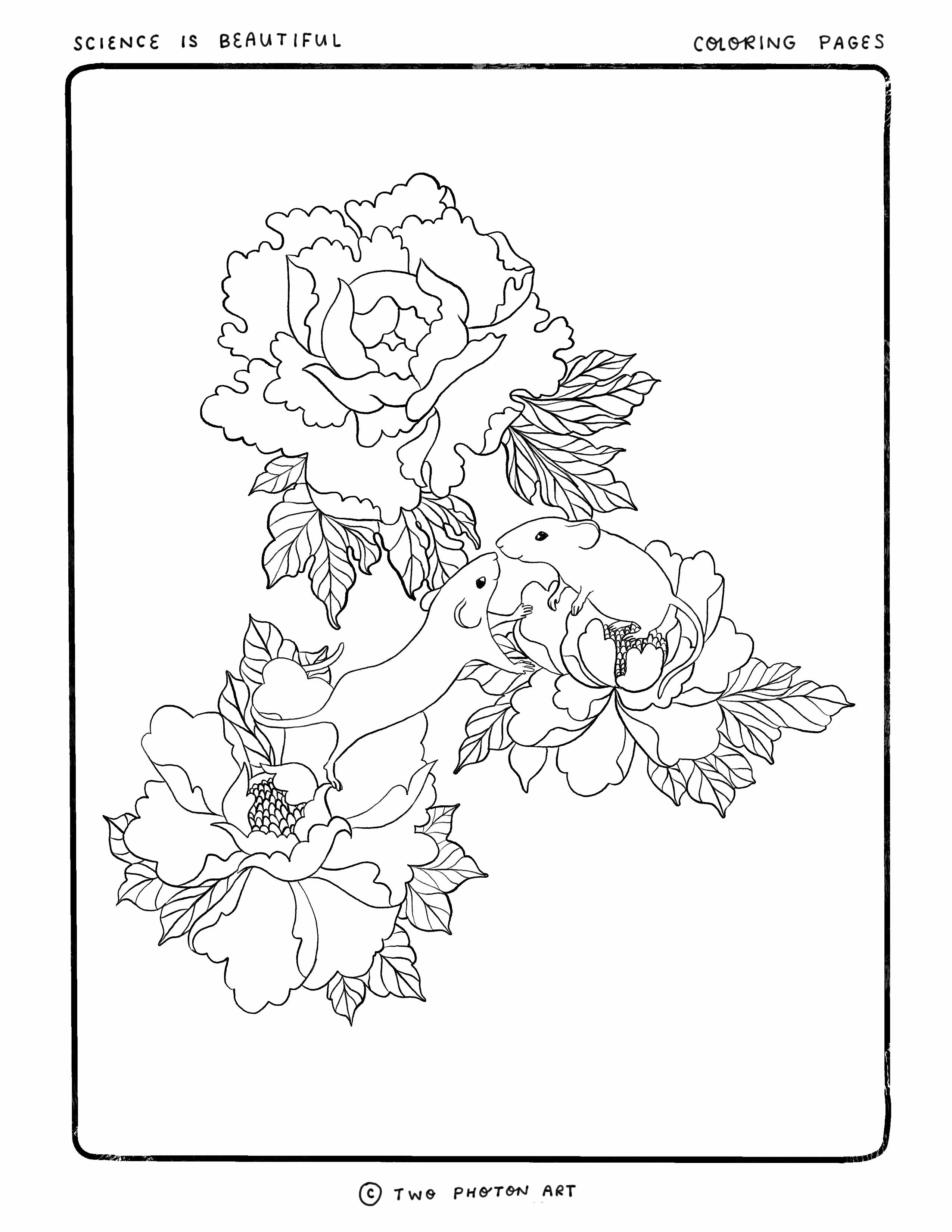Flower mice coloring page
