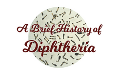 A Brief History of Diphtheria - zine cover mock-up