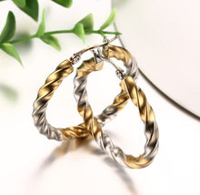 Load image into Gallery viewer, Earrings - Popular wavy line in round shape