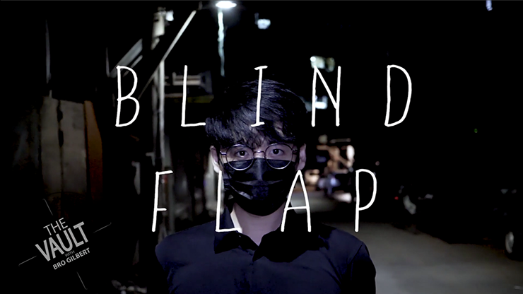 Blind Flap Project