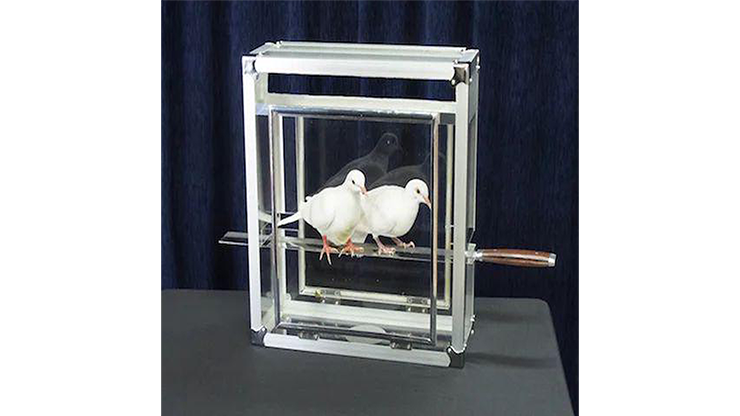 Doves on Sword in Glass Cube