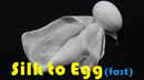Silk to Egg - Fast (Motorized)