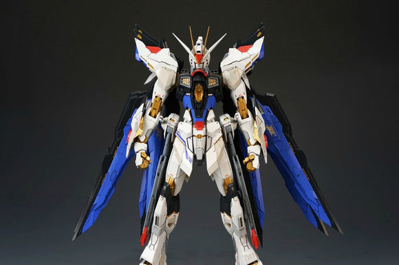 ZGMF-X20A Strike Freedom Fighter