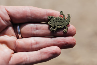 Pin - Radavist Horned Lizard