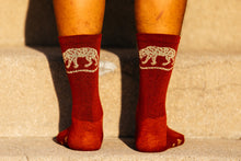 Load image into Gallery viewer, Socks - Jackal - Jasper Red Heathered Wool