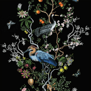 MUSE Wall Studio Special Order Climbing Bird and Branch in Black